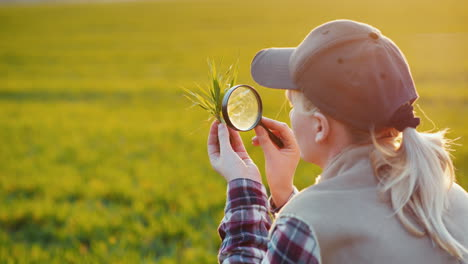 Young-Woman-Agronomist-Studying-Sprouts-On-The-Field
