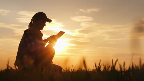 Young-Woman-Farmer-Studying-The-Seedlings-Of-A-Plant-In-A-Field-Using-A-Tablet