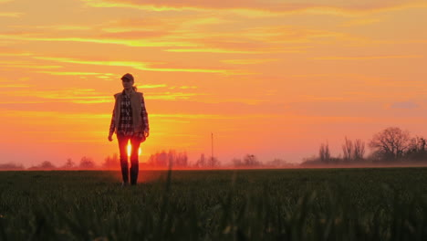 A-Confident-Farmer-Walks-Across-The-Field-Towards-The-Rising-Sun-Against-The-Backdrop-Of-Picturesque