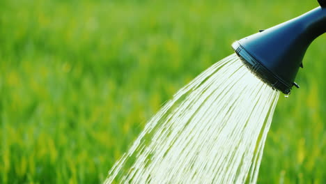 Man-Watering-Green-Grass-From-A-Sprinkler