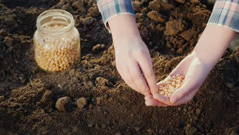 Woman-Planting-Seeds-In-Her-Garden-Close-Up