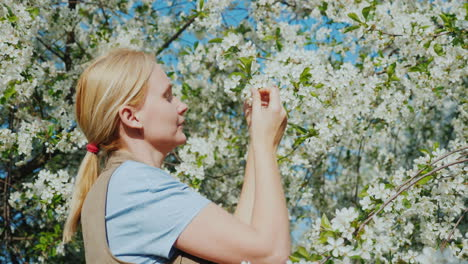 A-Young-Woman-Admires-A-Flowering-Tree-The-Arrival-Of-Spring-And-Heat