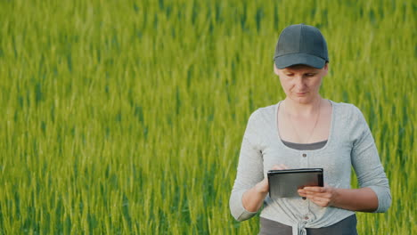 Farmer-With-A-Tablet-In-His-Hands-Working-On-A-Wheat-Field