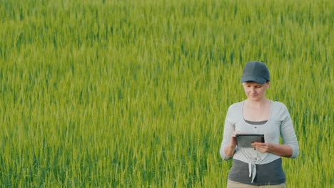 Woman-Farmer-With-Tablet-In-Hand-Stands-On-Field-Among-Wheat-Ears