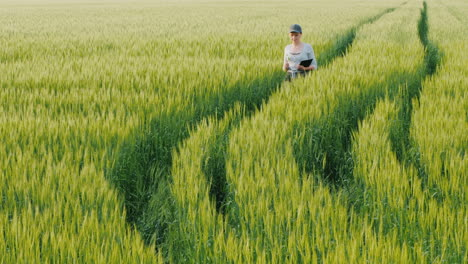 Young-Woman-Farmer-Walking-In-A-Field-Of-Green-Wheat