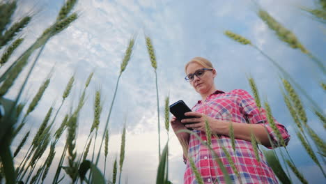 Woman-Farmer-Working-In-A-Wheat-Field-Using-A-Phone-Bottom-Angle-Shooting