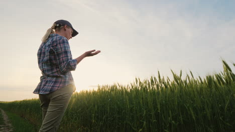 Woman-Farmer-Talking-On-The-Phone-Standing-In-A-Picturesque-Place-Near-A-Wheat-Field