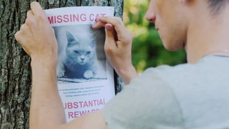 Man-Attaches-Ad-For-Missing-Cat