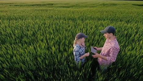 Two-Farmers-Communicate-In-A-Field-Of-Wheat-The-Woman-Speaks-On-The-Phone-My-Husband-Uses-The-Tablet