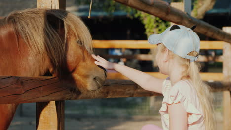 Girl-Strokes-A-Cute-Pony-That-Looks-Out-From-Behind-The-Fence