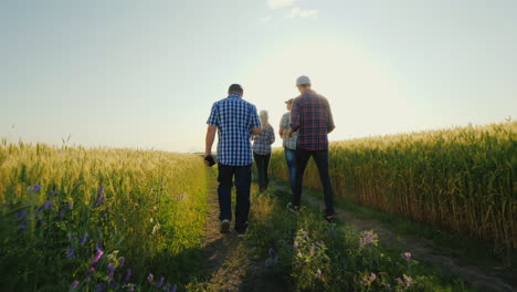 A-Group-Of-Farmers-Walking-Along-The-Wheat-Fields-Talking-Successful-Team-And-Team-Building-Concept