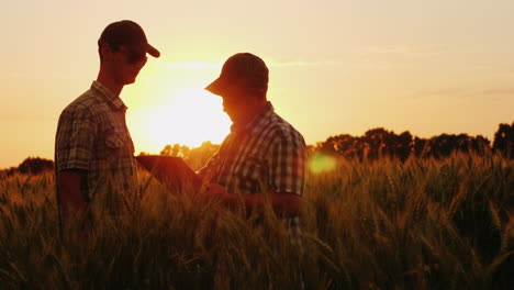 The-Farmer-Signs-A-Contract-On-The-Field-Business-Partners-Shake-Hands-Agribusiness-Deal