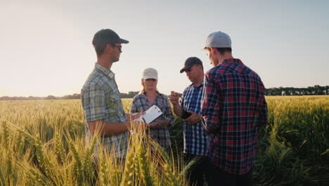 A-Group-Of-Farmers-Are-Chatting-Around-A-Wheat-Field-Debating-Teamwork
