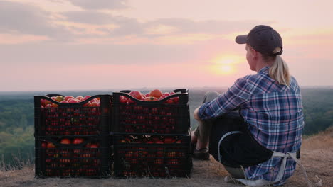 Woman-Farmer-Sitting-Near-Boxes-With-Tomatoes-Admiring-The-Beautiful-Landscape-Resting-After-Work