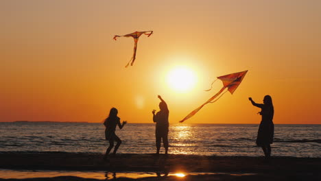 A-Young-Family-Actively-Spends-Time-Together---They-Play-Kites