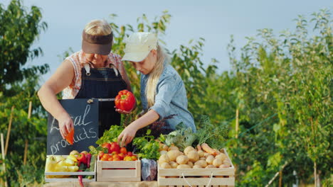 Grandmother-And-Granddaughter-Lay-Vegetables-On-The-Counter-Of-The-Farmers-Market