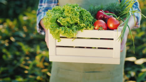 Hands-Holding-A-Wooden-Crate-With-Seasonal-Vegetables