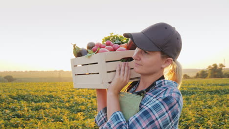 A-Female-Farmer-With-A-Box-Of-Fresh-Vegetables-Walks-Along-Her-Field-Healthy-Eating-And-Fresh-Vegeta