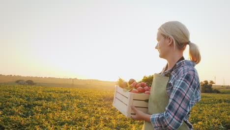 A-Young-Farmer-With-A-Box-Of-Vegetables-Goes-Across-The-Field-Farm-Productst