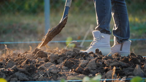 The-Woman-Farmer-Digs-A-Vegetable-Garden-Only-The-Legs-In-Working-Shoes-Are-Visible-In-The-Frame