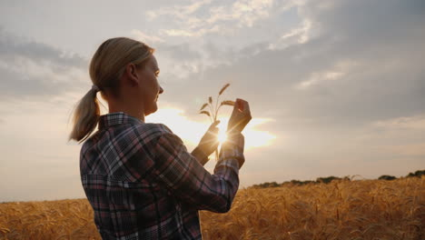 The-Farmer-Looks-At-The-Wheat-Ears-Stands-In-The-Field-At-Sunset