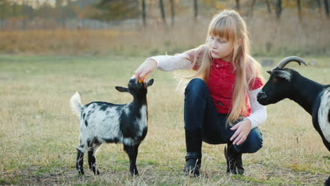 Cool-Girl-Gets-Confused-To-Treat-A-Kid-A-Large-Goat-Selects-A-Treat