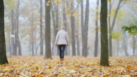 Fallen-Leaves-In-The-Park-In-The-Distance-A-Blurred-Silhouette-Of-A-Woman