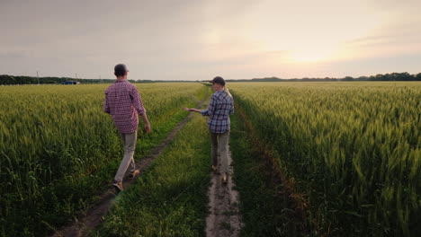 Young-Farmers-Walk-Along-A-Field-Of-Unripened-Wheat