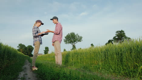 Two-Young-Farmers-Are-Talking-While-Standing-By-A-Field-Of-Wheat