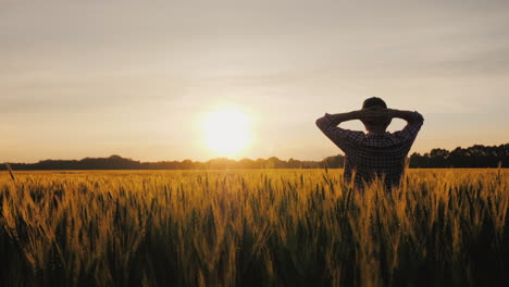 A-Successful-Farmer-Looks-At-His-Wheat-Field-At-Sunset