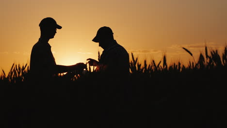 Farmers-Sign-Contract-On-The-Field-Shake-Hands