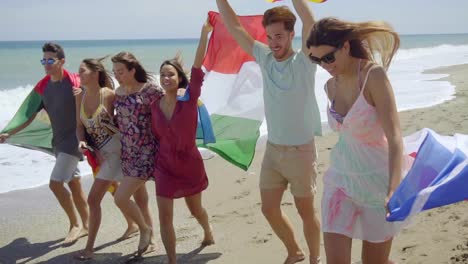 Group-of-Friends-with-Flags-Walking-on-Sunny-Beach