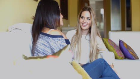 Smiling-attractive-woman-chatting-to-her-friend