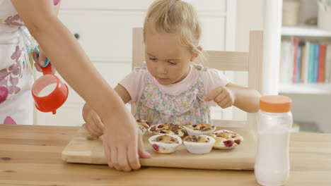 Woman-placing-tray-of-muffins-in-front-of-child