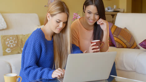Two-happy-young-women-browsing-the-internet