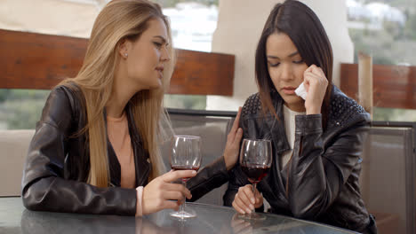 Woman-drinking-with-weeping-friend