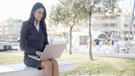 Business-Woman-Working-In-The-Park