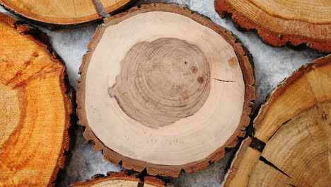 Aged-cracked-wooden-circular-tree-section-with-rings
