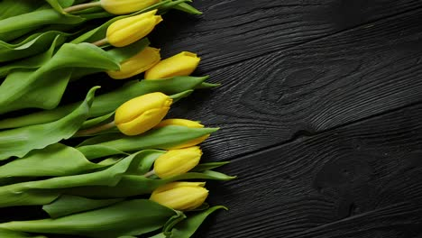 Composition-of-fresh-yellow-tulips-placed-in-row-on-black-rustic-wooden-table