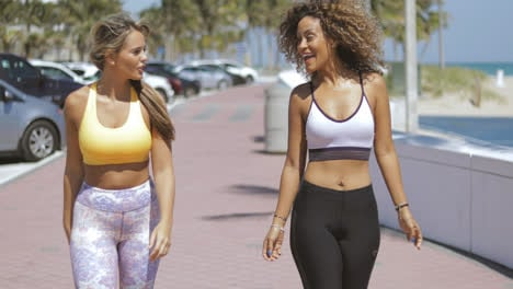 Smiling-sporty-women-strolling-on-waterfront