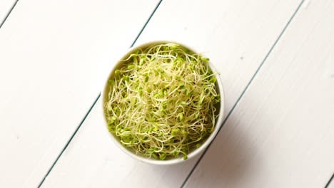 Bowl-full-of-fresh-radish-sprouts-placed-on-white-wooden-background