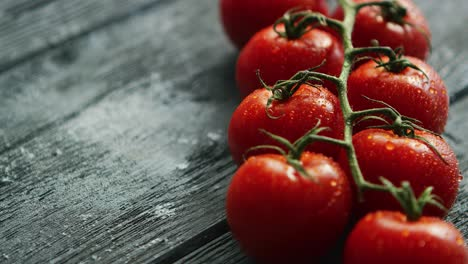 Branch-with-cherry-tomatoes