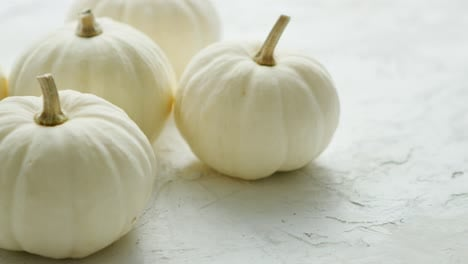White-small-pumpkins-on-the-table