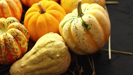 Heap-of-pumpkins-with-hay