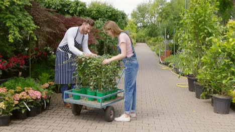 Man-and-woman-with-wagon-in-garden