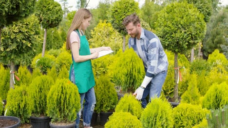 Man-and-woman-professional-gardeners-with-small-potted-tree-in-the-garden
