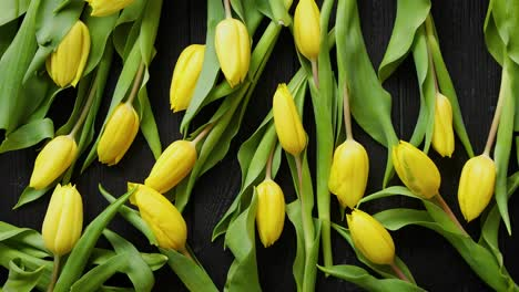 Yellow-tulips-placed-on-black-table-Top-view-with-flat-lay