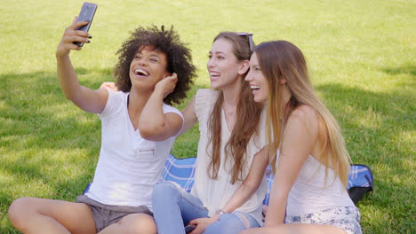 Happy-women-taking-selfie-in-park