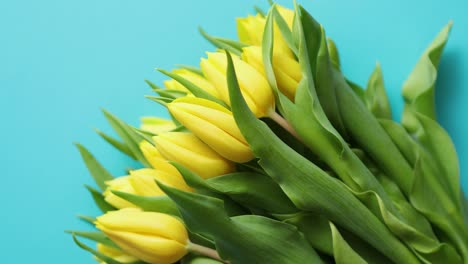 Holiday-contept-decoration-with-easter-eggs-and-yellow-tulips-over-blue