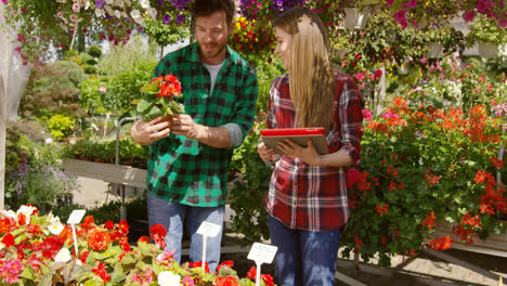 Professional-male-gardener-standing-in-garden-and-showing-plant-to-woman